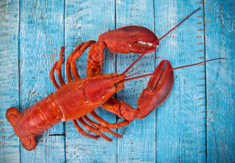 "Lobster Wholesaler Sends Lawyer's Emails to FBI and Waives Privilege in the ""Most New England Crime Ever"""